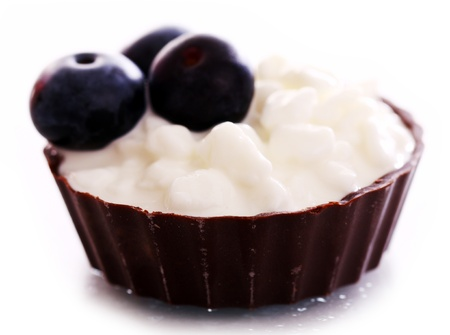 Dessert with blueberry and cottage cheese over white background photo