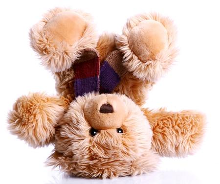 osos navide�os: Lindo Osito de peluche contra el fondo blanco Foto de archivo