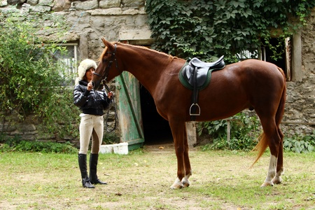equestrian: Woman and her beautiful  brown horse