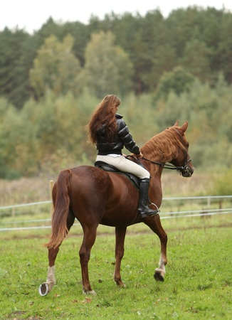 woman horse: Woman and her beautiful  brown horse