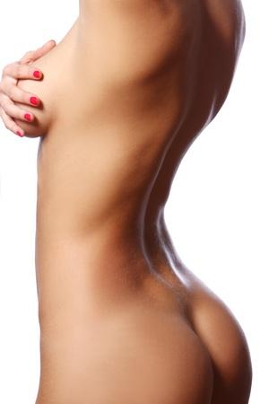 woman naked body: Beautiful female body over white background