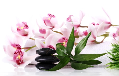 hot rock therapy: Spa stones and beautiful orchid over white background