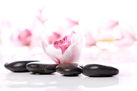 oriental flower: Spa stones and beautiful orchid over white background