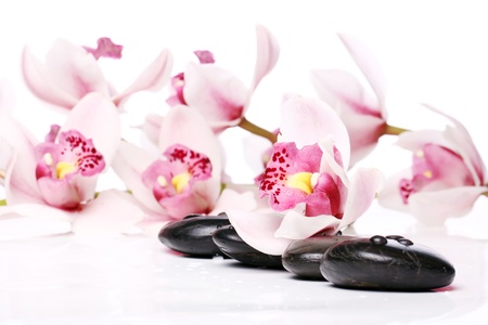 Spa stones and beautiful orchid over white background