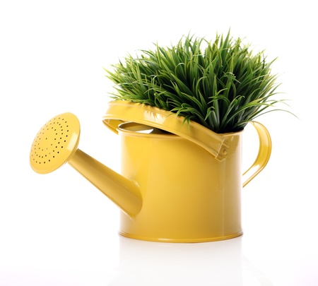 Watering can and grass over white background photo