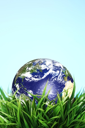 Earth sphere in grass photo
