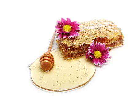 Close up of fresh honeycombs photo