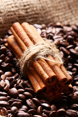 Close up of coffee beans and cinnamon sticks photo