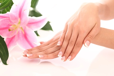manicure: Beautiful woman hands and lily flower over white background