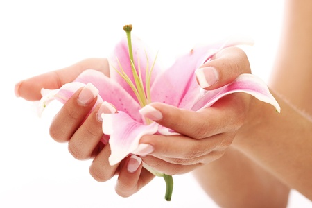 Beautiful woman hands and lily flower over white background photo