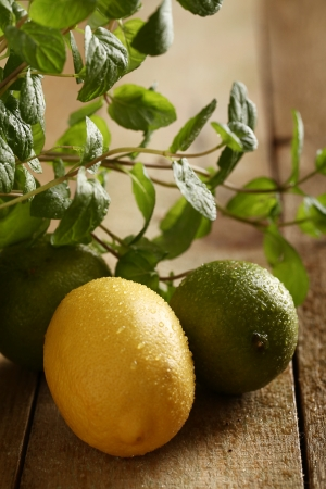 Green lime, yellow lemon and fresh mint on wooden surface photo