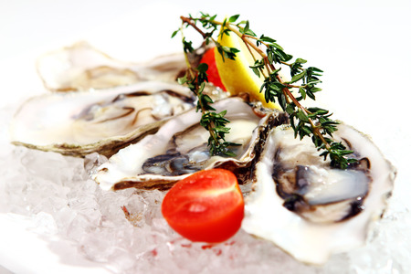 Fresh oysters served on ice with lemon and tomato  photo
