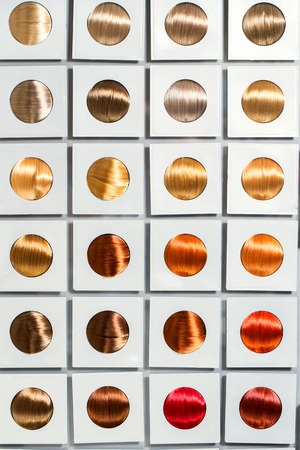 Hair  Colorful hair tone options Stock Photo