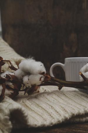 plant gossypium: Fiore di cotone sul maglione Archivio Fotografico