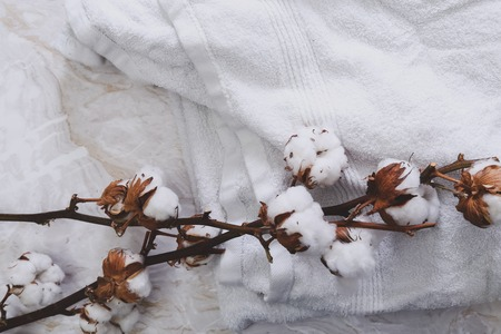 cotton flower: Cotton flower on a white towel Stock Photo