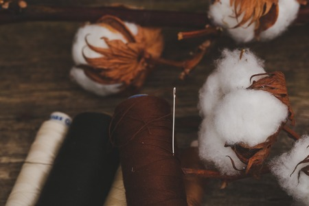 cotton flower: Threads with cotton flower on the table