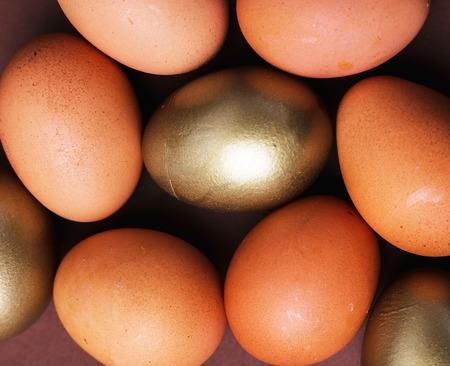 a rare: Business, finance. A rare golden egg Stock Photo