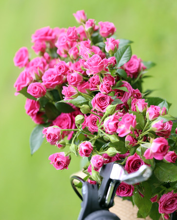 pion: Picture of a beautiful bouquet of flowers Stock Photo