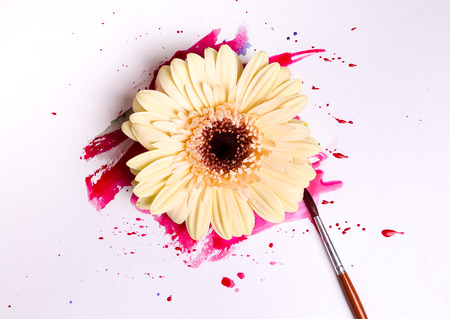 Colorful watercolor paint with flower photo