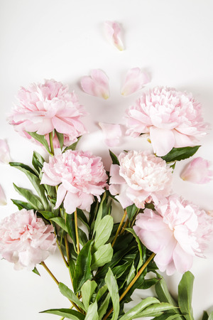 flowers beautiful: Flowers. Beautiful peony on the table