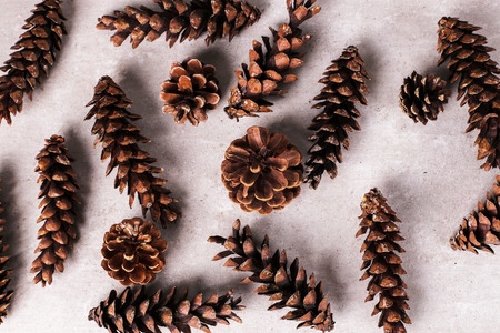 festive pine cones: Christmas theme. Pine cones on the table
