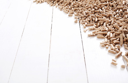 bioenergy: Resource. Pellets on the table