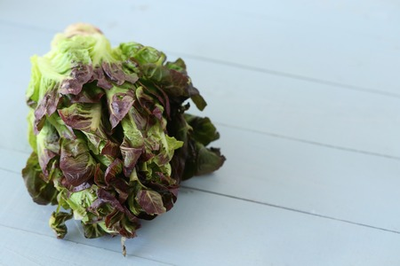 Vegetable. Fresh cabbage on the table Stock Photo