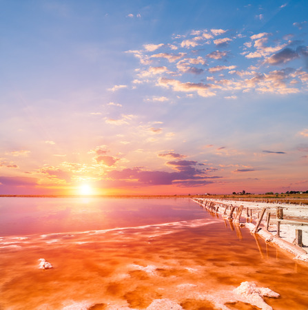 sunset on a pink salt lake, a former mine for the extraction of pink salt. row of wooden pegs overgrown with salt.