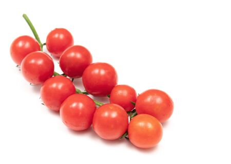 A branch of red cherry tomatoes on a white background. Small and juicy vegetable is rich in vitamins and trace elements. Healthy food. Fresh and organic vegetables. Raw food.