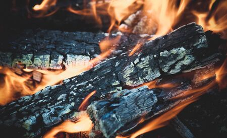 Fascinating bonfire, with glowing wood and wriggling flames. The texture of the burning tree. Bonfire on the nature for cooking.