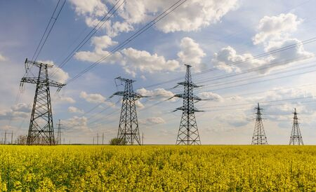 Power lines and high-voltage lines against the backdrop of blooming oilseed rape on a summer day. Green energy.