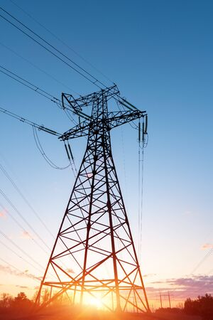 distribution electric substation with power lines and transformers, at sunset Zdjęcie Seryjne