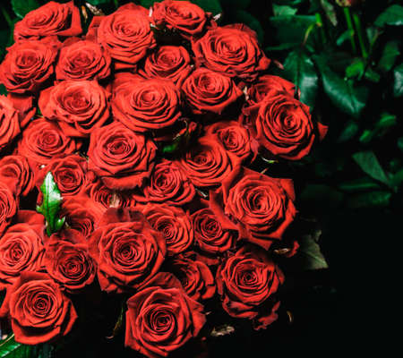 Red roses collected in a gift bouquet on a dark background. 免版税图像