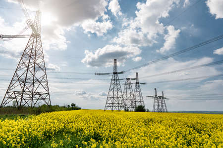 power line pylons in a blooming colza field with a beautiful saturated sky. distribution, transmission and consumption of electricity