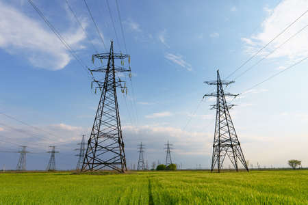 Electric poles in green wheat fields at daytime. Transportation of alternative and renewable electricity.