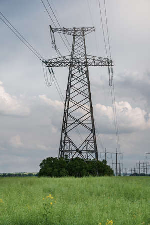 Power lines and high-voltage lines against the backdrop of oilseed rape on a summer day. Green energy.