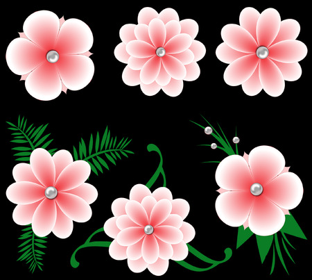 petal: pink flowers isolated Stock Photo