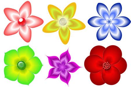 colorful flowers isolated Zdjęcie Seryjne