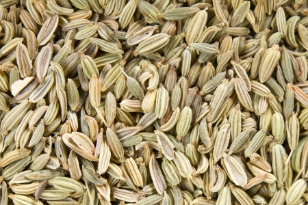 fennel seeds: Fennel seeds Stock Photo