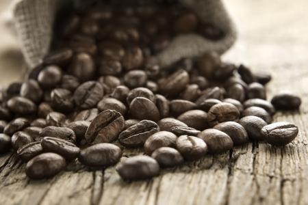 robusta: Coffee