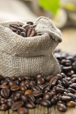 coffee sack: Black roasted coffee beans in a small burlap sack