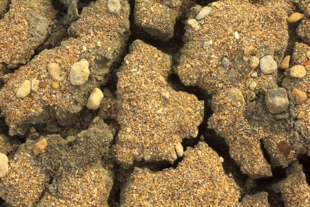 mire: Dry cracked ground in desert