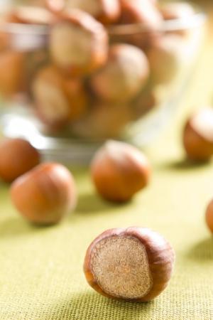 filbert: Hazelnuts (filbert)