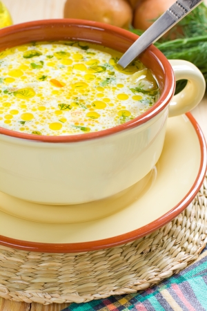 chicken soup: Vegetable soup
