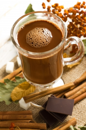 Cacao Stock Photo - 16361833