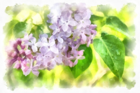 Spring flowers. Digital art Stock Photo - 17513173