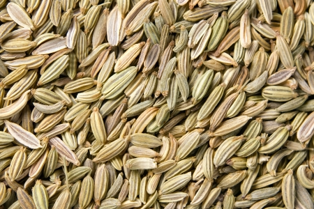 fennel seed: Fennel seeds background