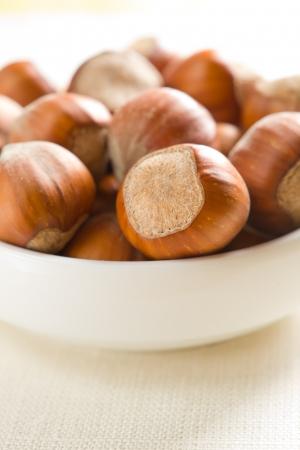 filbert: Hazelnuts  filbert  Stock Photo