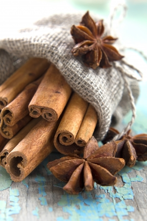 Cinnamon and anise in a small burlap sack photo