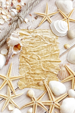 lashing: Sea shells Stock Photo